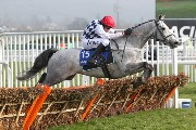 Simonsig in action at Cheltenham 2012