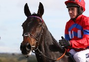 Sprinter Sacre in portrait.