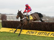 Sprinter Sacre in action at Newbury