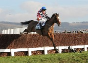 The Giant Bolster at Cheltenham